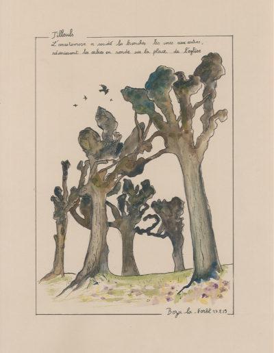 Tilleuls Bezu-la-Forêt
